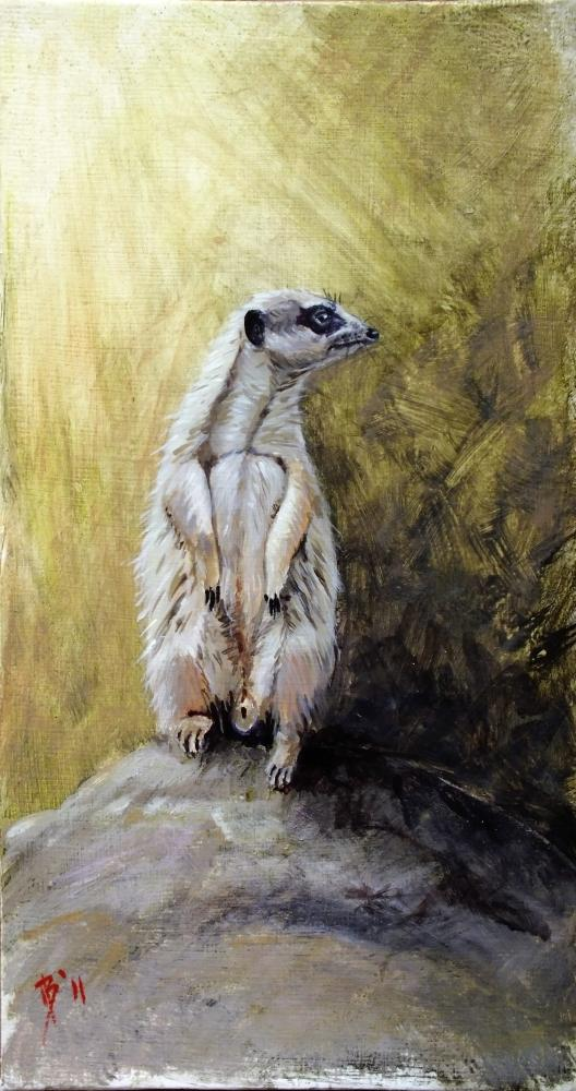 Acrylic Painting of a Meerkat