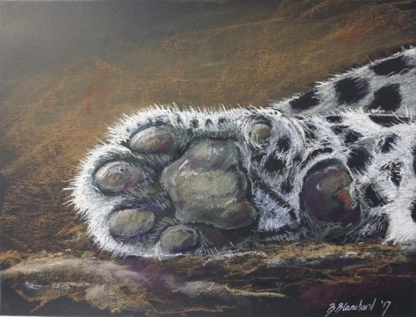 Pastel Sketch of a Leopard's Paw