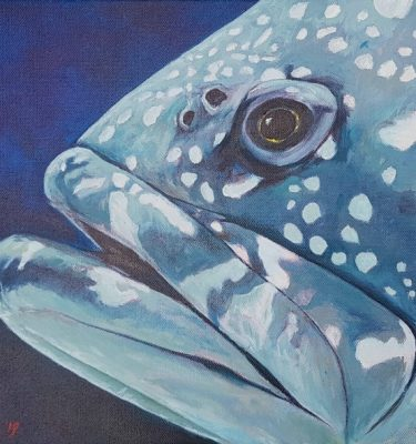 Acrylic painting of a potato cod