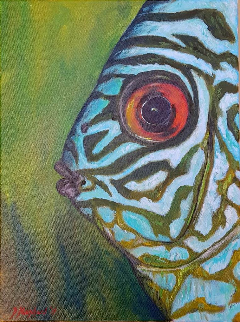 Acrylic painting of a Cichlid