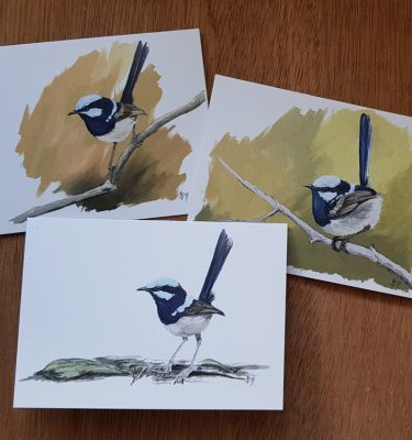 Set of Superb Fairy-wren cards