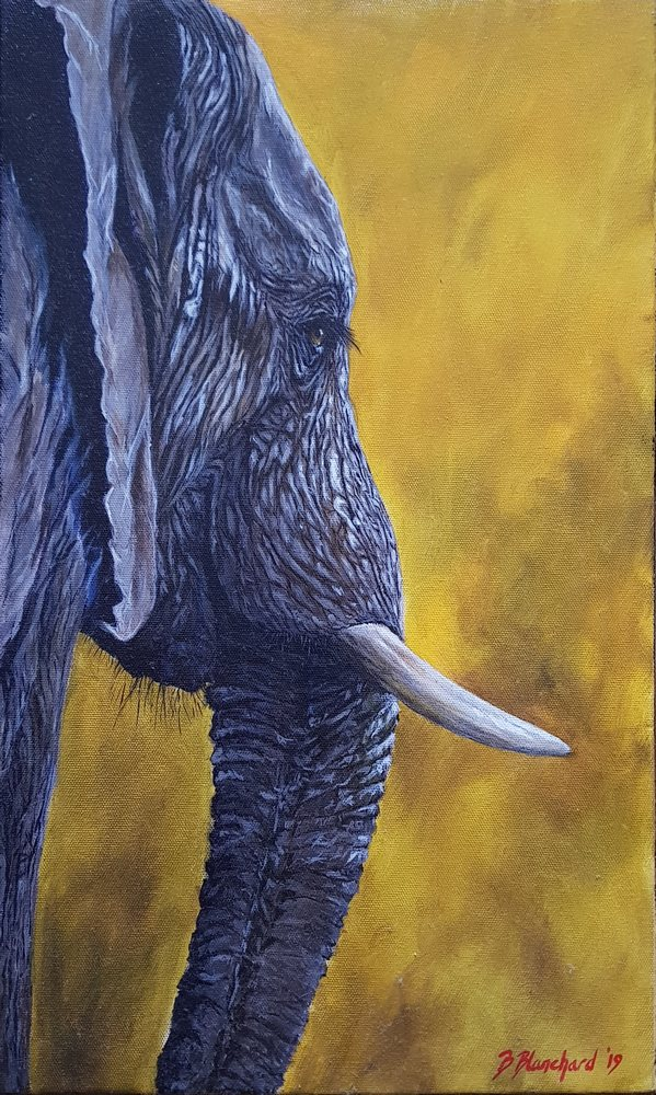 Acrylic painting of an Africa Elephant